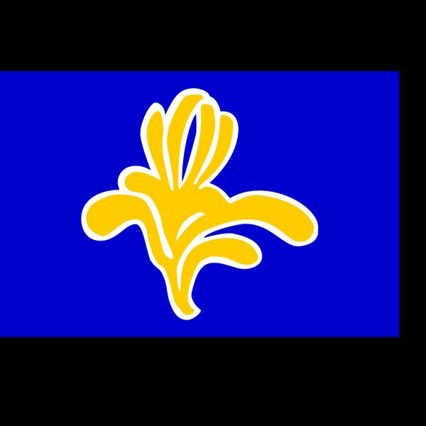 Flag Of Brussels PNG Clip art