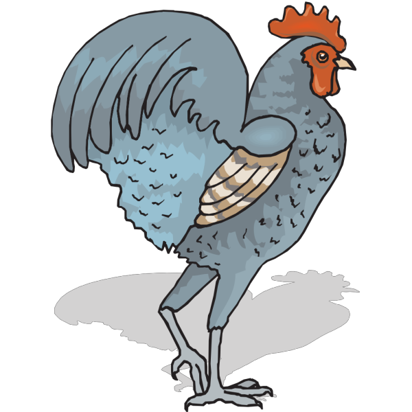 Walking Rooster PNG Clip art