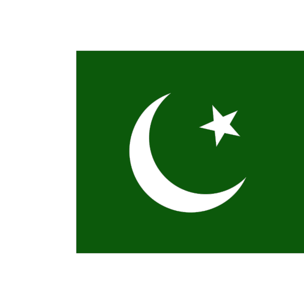 Faded Flag Of Pakistan PNG Clip art