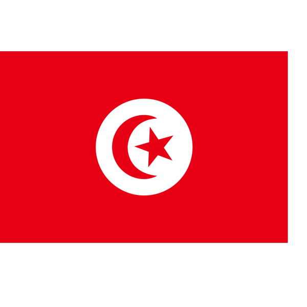 Flag Of The Republic Of Tunisia PNG Clip art