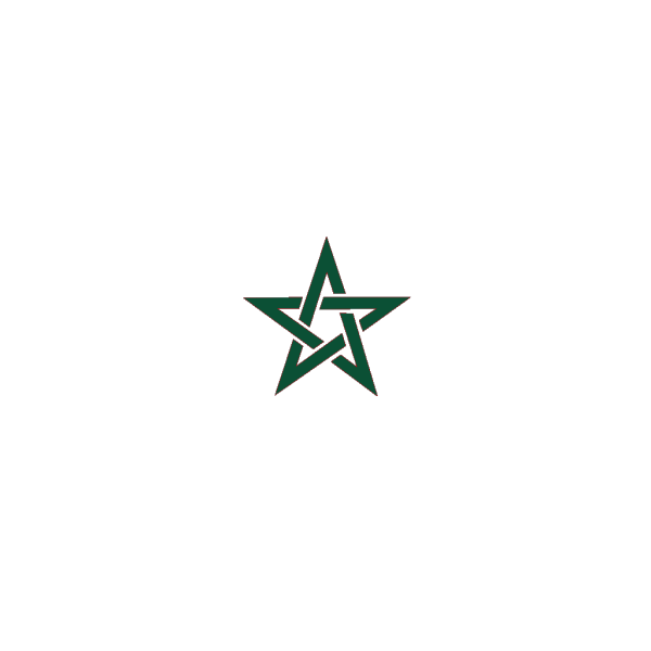 Flag Of Morocco PNG Clip art