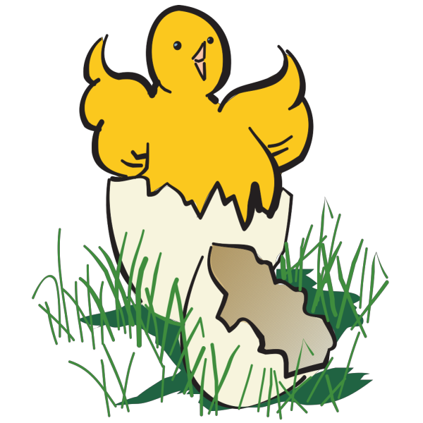 Baby Chick Hatching PNG Clip art
