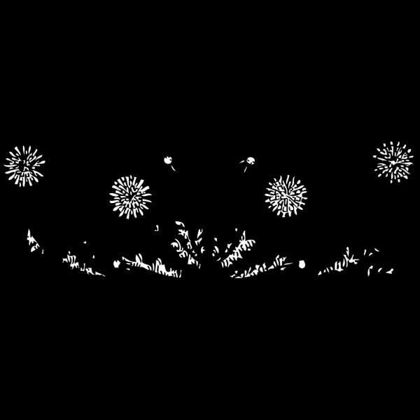 Dandelions PNG Clip art