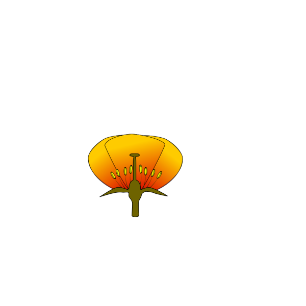 Pink Flower 9 PNG Clip art