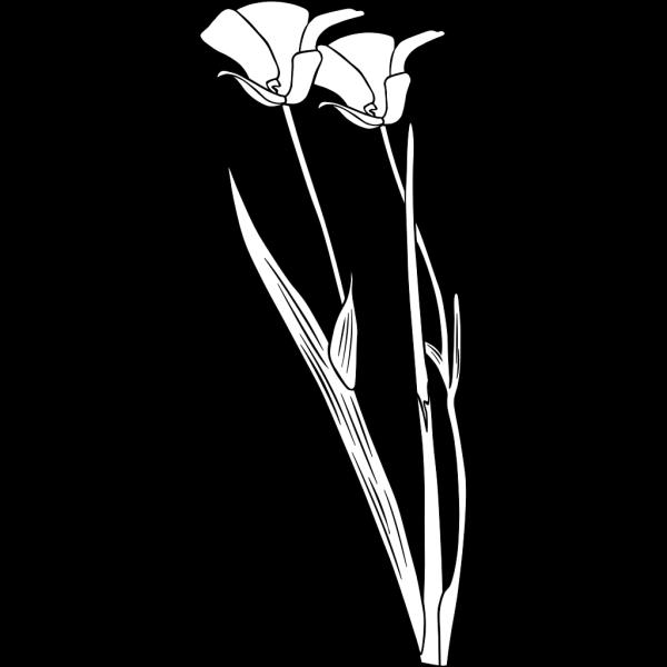 Plant Flower Outline PNG Clip art