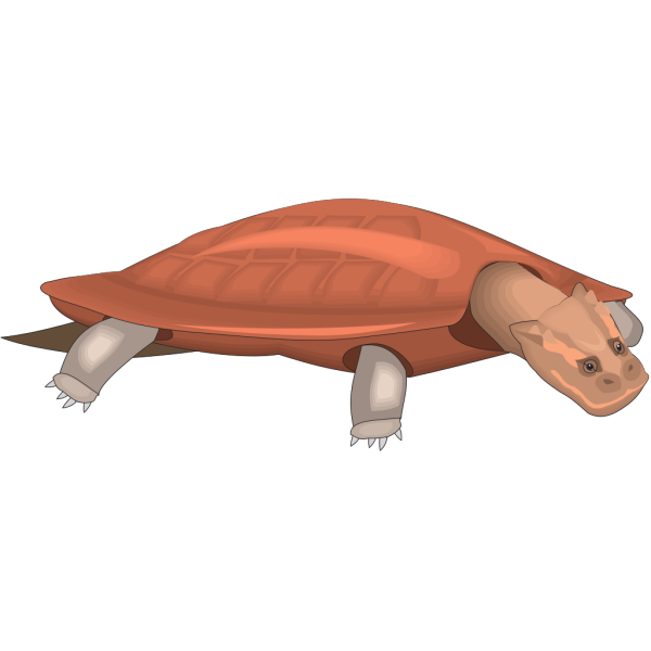 Henodus PNG images