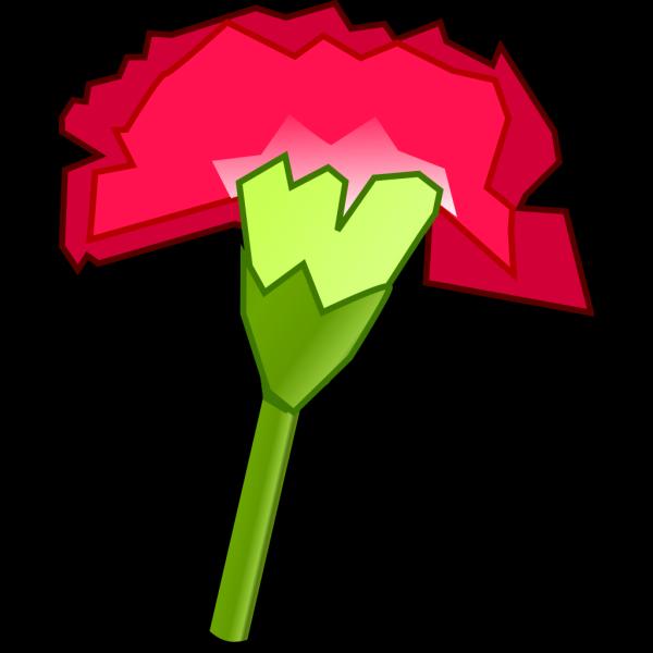 Carnation Flower 2 PNG Clip art