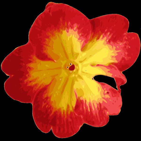Flower Pedals PNG Clip art