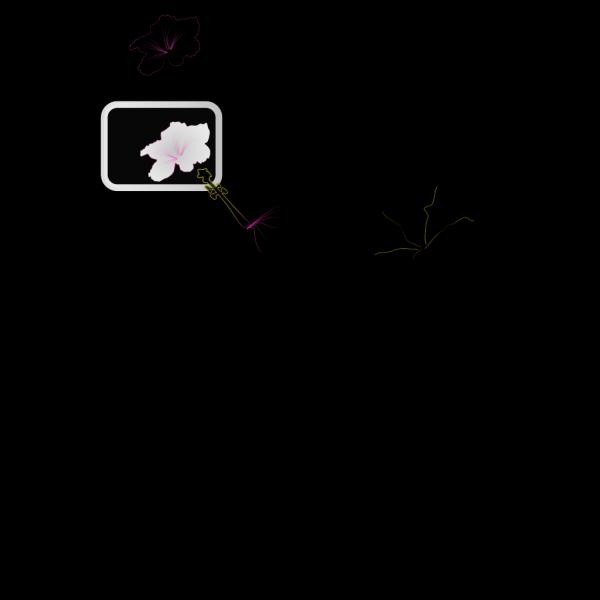 Hibiscus 2 PNG Clip art