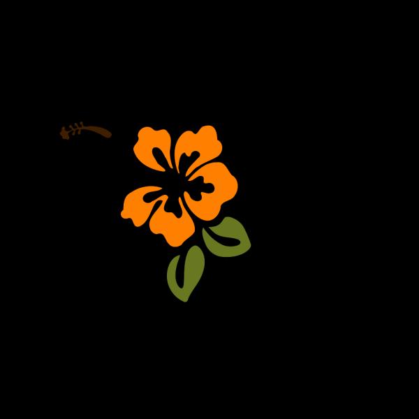 Flower Hibiscus PNG Clip art