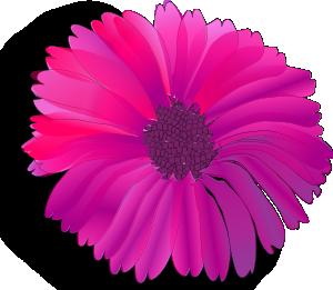 Pink Flower 13 PNG Clip art
