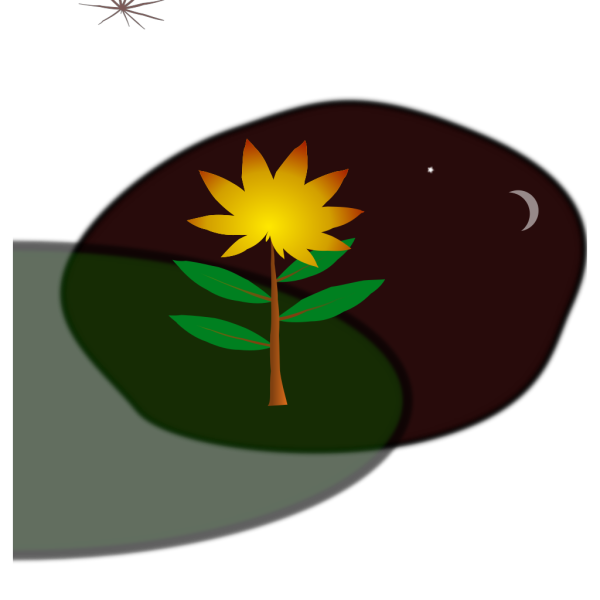 Flower At Night PNG Clip art