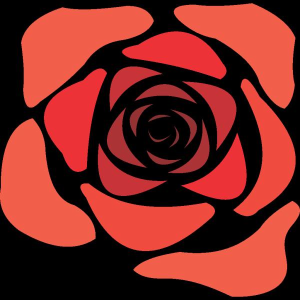 Rose Flower Crocus  PNG Clip art