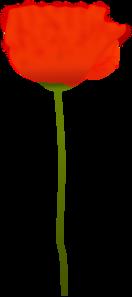 Poppy Flower PNG Clip art