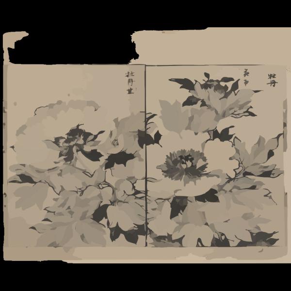 Peony Blossoms PNG Clip art