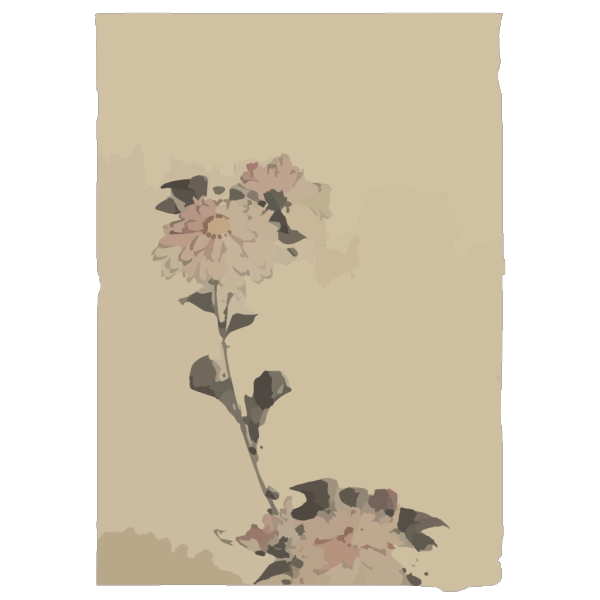[pink Flower Blossoms On Low Stalk And Two On A Tall Stalk] PNG Clip art