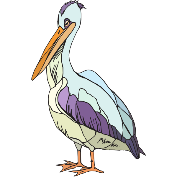 Colorful Pelican PNG images
