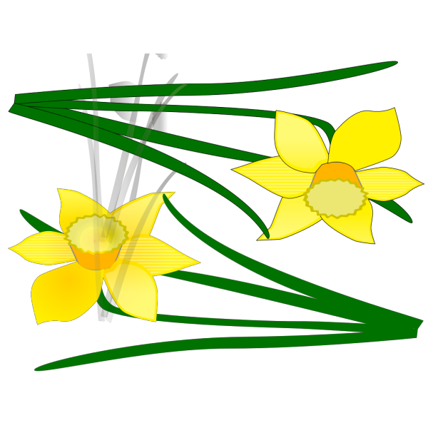 Two Flowers PNG Clip art