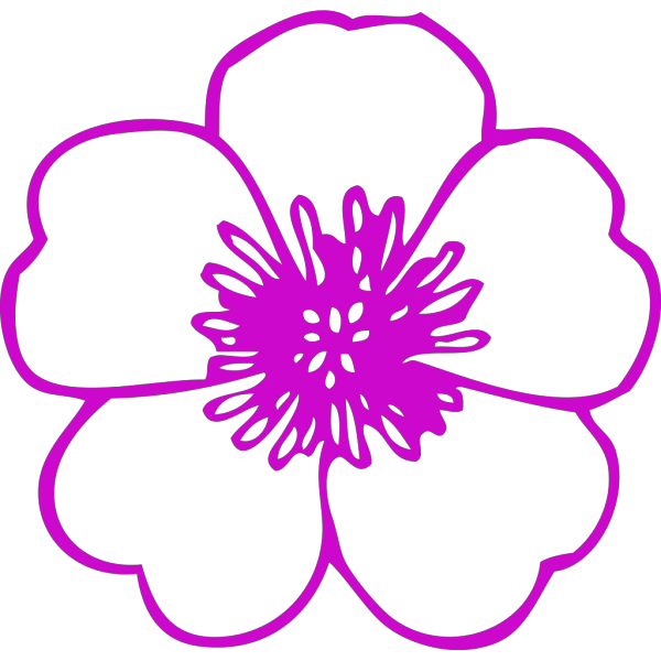 Pink Flower 5 PNG Clip art