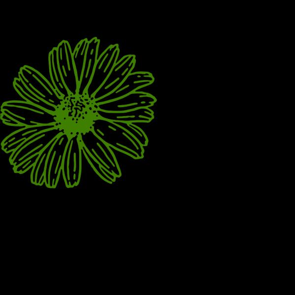 Green Gerber Daisy PNG Clip art