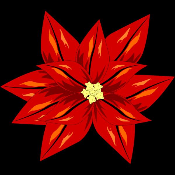 Poinsettia PNG Clip art