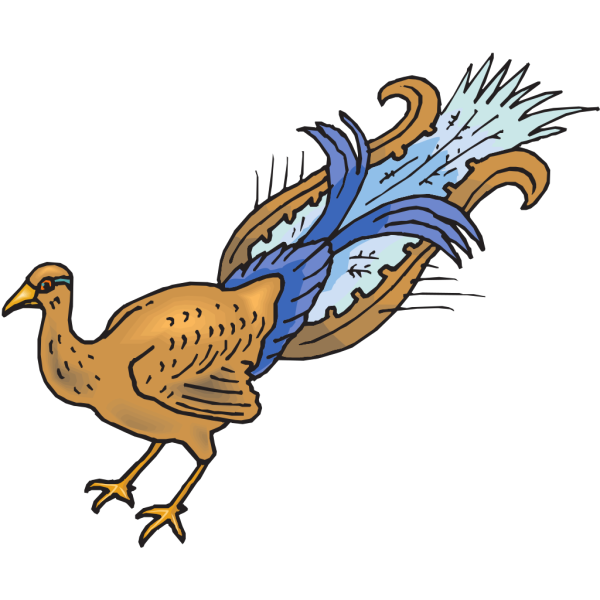 Plucked Peacock PNG Clip art