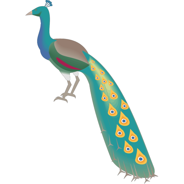 Digital Peacock Art PNG images