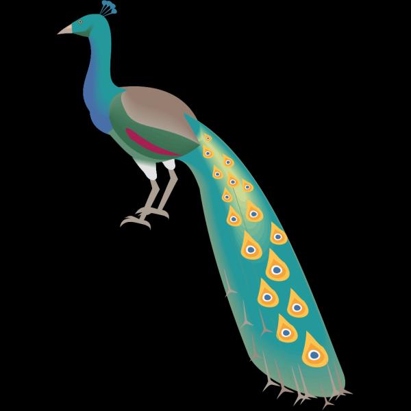 Digital Peacock Art PNG Clip art