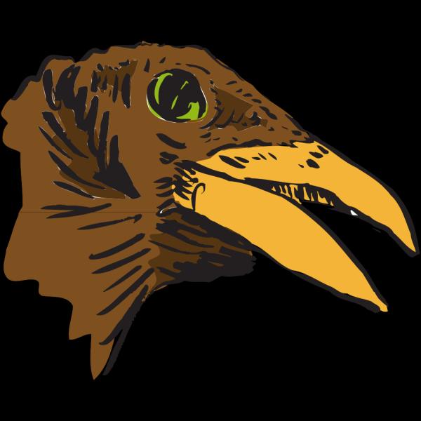 Brown Bird Head Art PNG Clip art