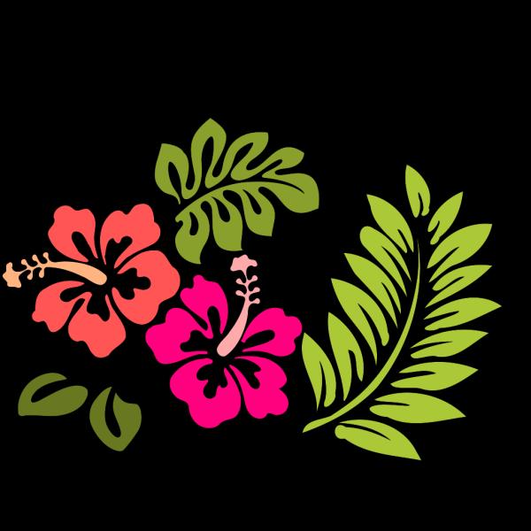 Hibiscus 6 PNG Clip art