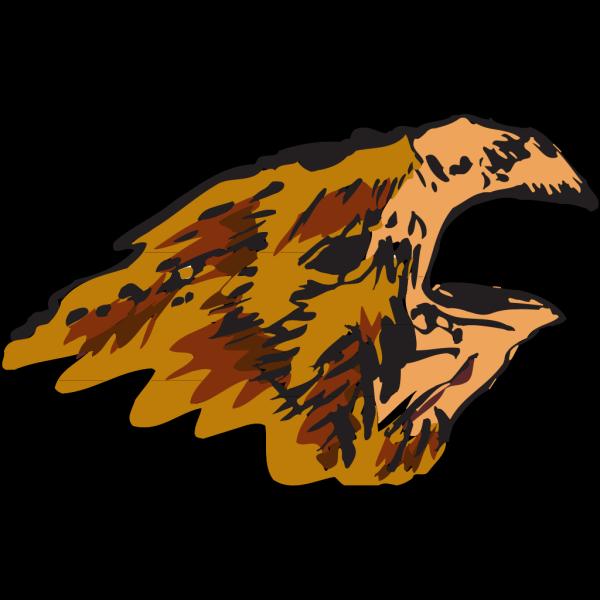 Bird Head Drawing PNG Clip art