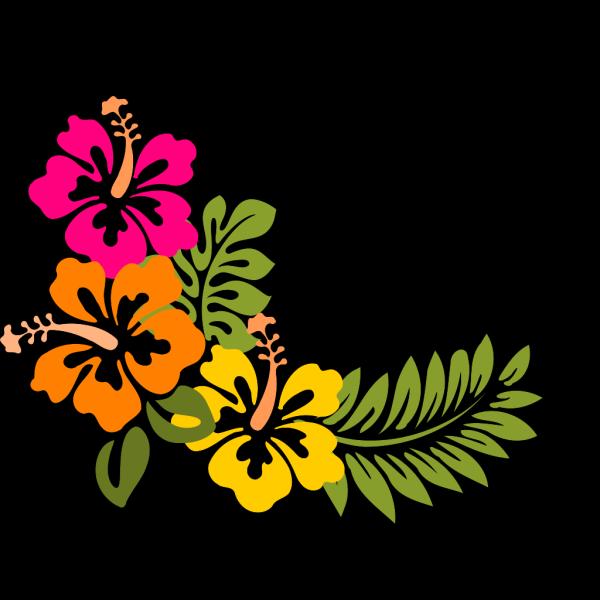 Hibiscus 7 PNG Clip art