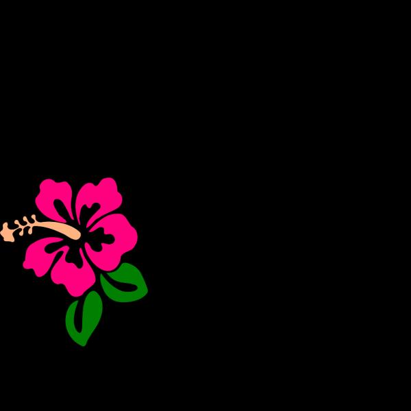 Hibiscus 9 PNG Clip art