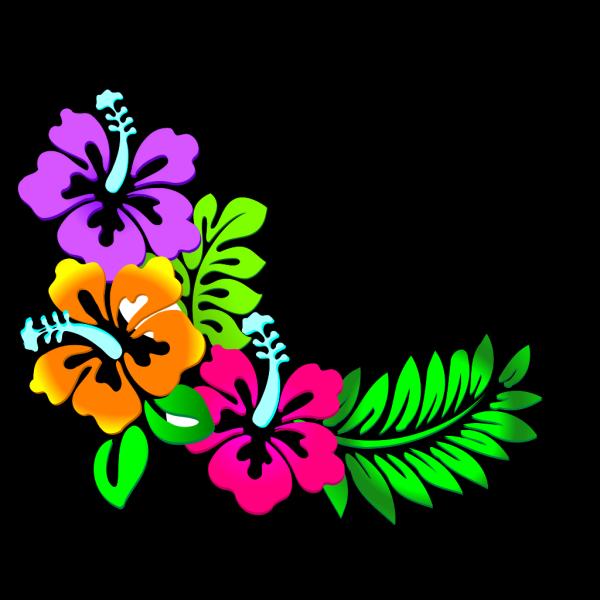 Hibiscus Corner 3 PNG Clip art
