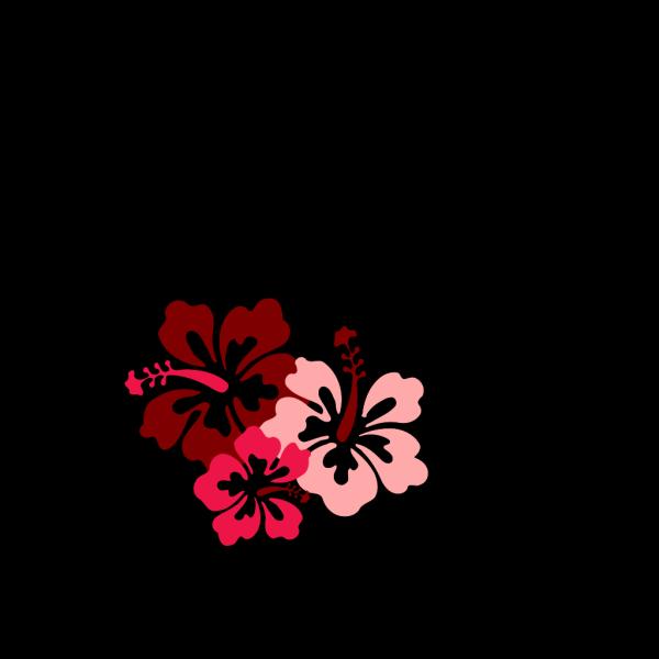 Hibiscus Pink PNG Clip art