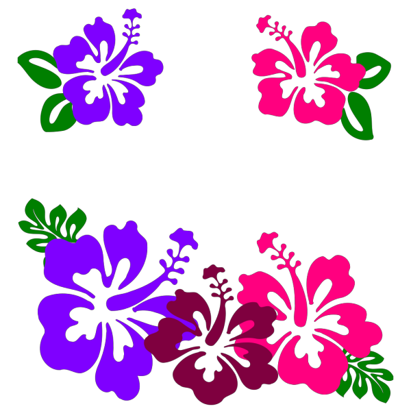 Hibiscus Group PNG Clip art