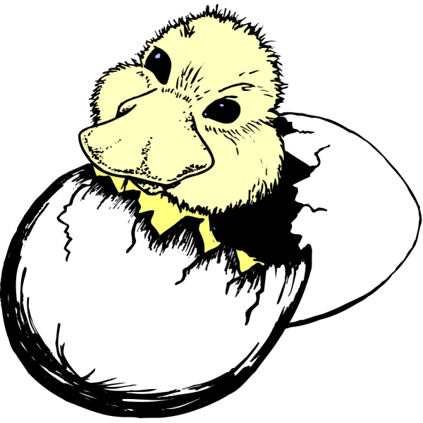 Duck Hatching And Falling PNG Clip art