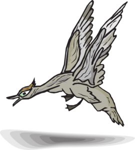 Gray Duck Landing PNG images