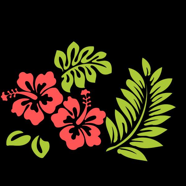 Hibiscus 19 PNG Clip art