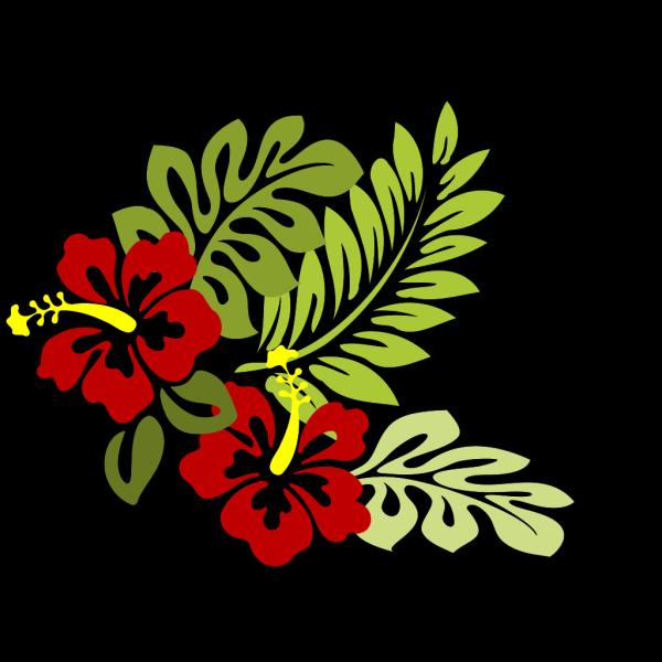 Hibiscus 21 PNG Clip art