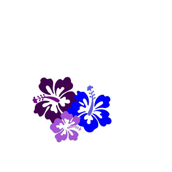 Hibiscus 23 PNG clipart