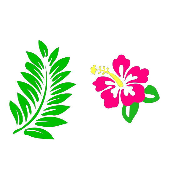 Hibiscus 25 PNG Clip art
