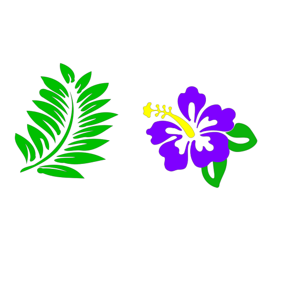 Hibiscus 28 PNG Clip art