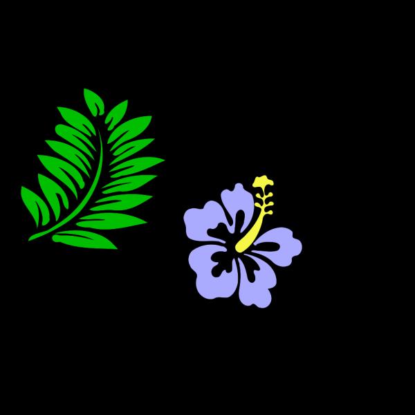 Hibiscus 29 PNG Clip art