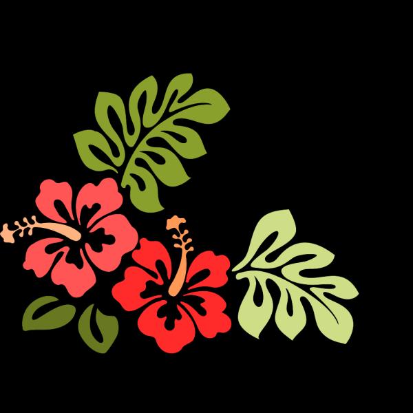 Hibiscus PNG Clip art