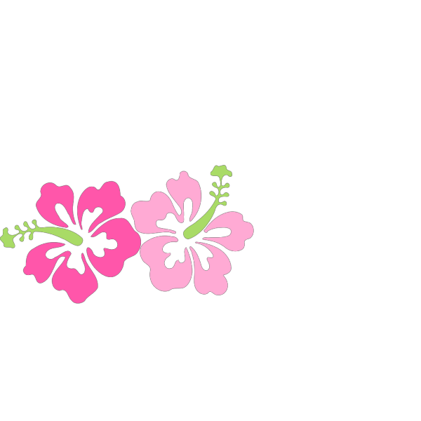 Pinky Hibiscus PNG images