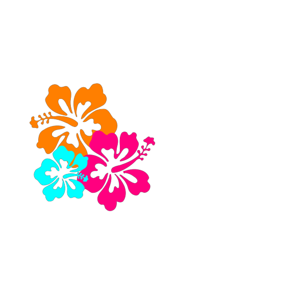 Hibiscus Flowers PNG Clip art