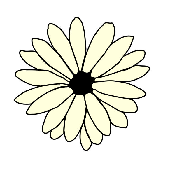 Ivory Daisy PNG Clip art