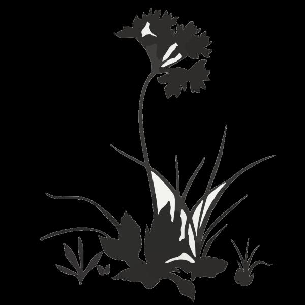 Flower Scan PNG Clip art