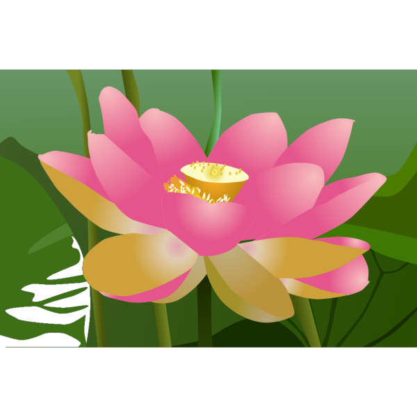 Pink Lotus Flower PNG Clip art